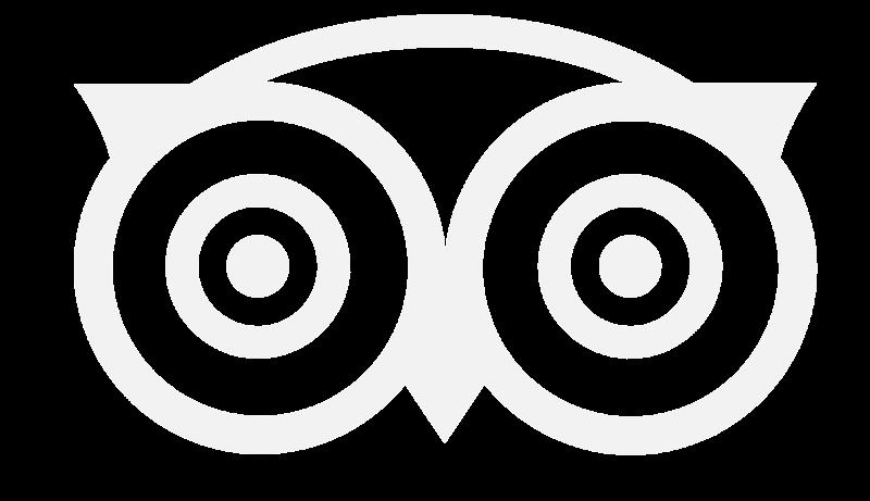 TripAdvisor Logo Preloader